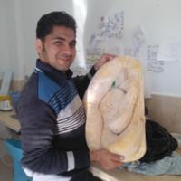 Ahmedn2's photo