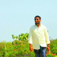chandu144's photo