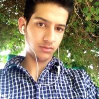 Milad147's photo