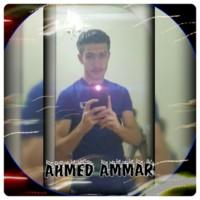 Ahmed0ammar's photo