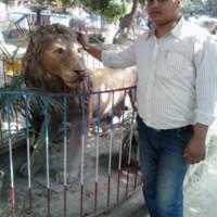 kazimajharulanwar's photo