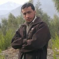 Hamid444's photo