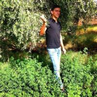 Nadiri71's photo