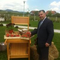 bogdan11's photo