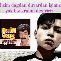 KELEŞ 's photo