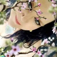 bhens24's photo