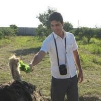 I'm Abolfazl.'s photo