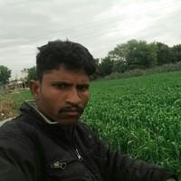 shailesh's photo