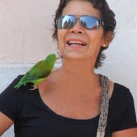Caricaco's photo