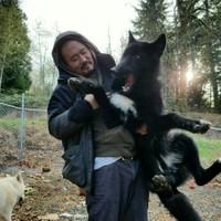 awarewolf's photo