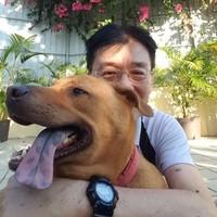 Zhang Dennis's photo
