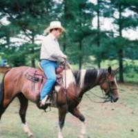 1961cowboy's photo