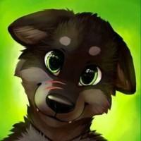 gayfurrywolf's photo
