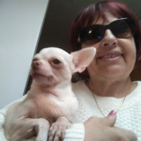 Dena's photo