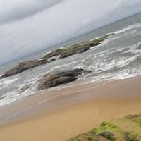kharshak82@gmail.com's photo
