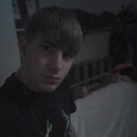 greyking2's photo