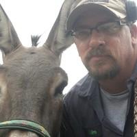 Donkeyman11's photo