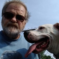 Canine's photo