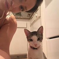 Catbeemck's photo