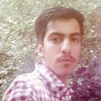 Shahinsha190's photo