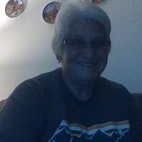 Silver Fox Lady's photo