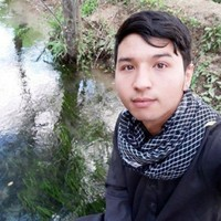 alireza 's photo