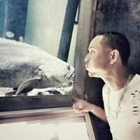 stylesfeliz's photo