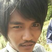 tam0541's photo