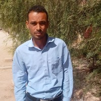 bachir's photo