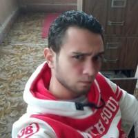 Gay hookup alexandria egypt