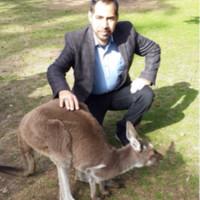 mohammedfar1's photo