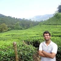 Sharma47's photo