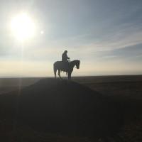 Cowboy7832's photo