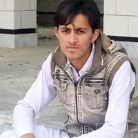 shshmajid's photo