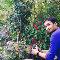 vkasal's photo