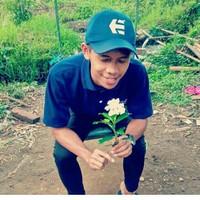 dhamn's photo