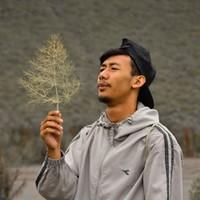 wangsa's photo
