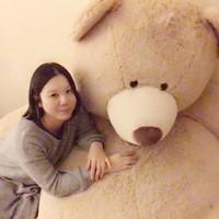 Akikota's photo