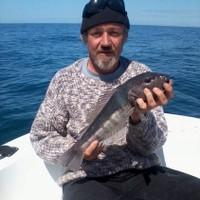 Partfish2's photo